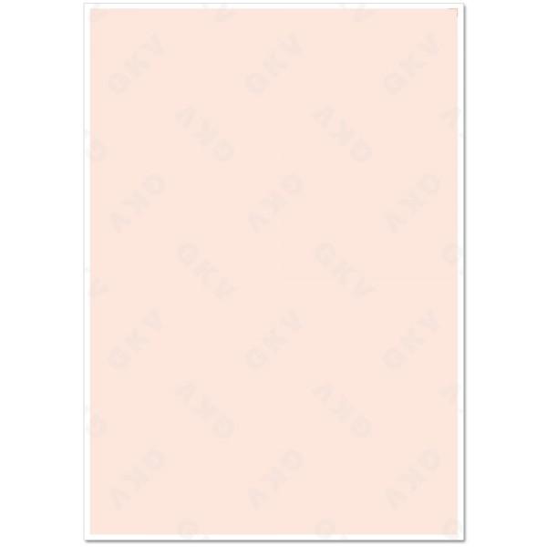 51380 Blankoformular